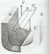 Giải bài tập SBT Vật lý lớp 9 bài 30: Bài tập vận dụng quy tắc nắm tay phải và quy tắc bàn tay trái