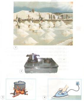 Giải bài tập SGK Khoa học 4