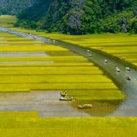 Giải bài tập SGK Địa lí 4 bài 20: Hoạt động sản xuất của người dân ở Đồng bằng Nam Bộ (tiếp theo)