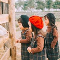 Đề thi giữa học kì 2 môn Tiếng Việt lớp 5 trường Tiểu học Ấp 6 Bàu Đồn, Tây Ninh năm học 2017 - 2018