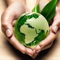 Báo cáo tiến độ thực hiện đề án bảo vệ môi trường