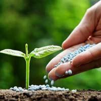 Giải bài tập SGK Khoa học 5 bài 66: Tác động của con người đến môi trường đất