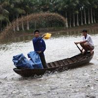 Đơn đề nghị xác nhận thay đổi thông tin của thức ăn chăn nuôi, thủy sản