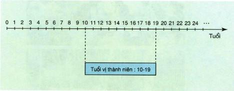 Giải bài tập SGK Khoa học 5 bài 20, 21