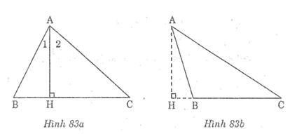 Bài tập toán 7