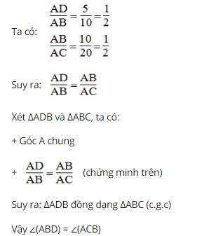 Bài tập toán lớp 8