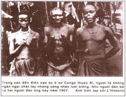 Lý thuyết Lịch sử 11 bài 5: Châu Phi và các nước Mỹ La-tinh (cuối thế kỉ XIX - đầu thế kỉ XX)