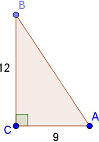 Giải bài tập SGK Toán lớp 9 bài 2: Tỉ số lượng giác của góc nhọn