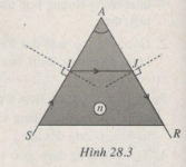 Giải bài tập SBT Vật lý 11 bài 28