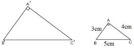 Giải bài tập SGK Toán lớp 8 bài 8: Các trường hợp đồng dạng của tam giác vuông