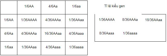 Tóm tắt lý thuyết Sinh học 12 bài 9