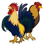 Tranh tô màu con gà