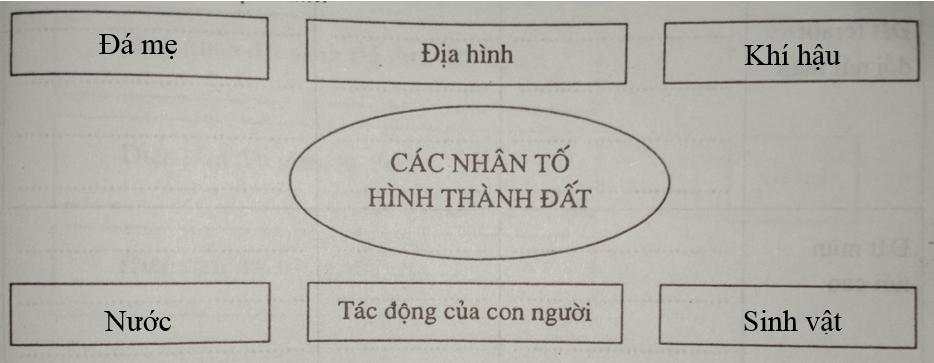 Giải vở bài tập Địa Lý 8 bài 36: Đặc điểm đất Việt Nam