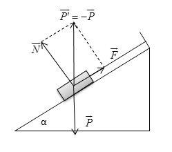 Giải bài tập SBT Vật lý 10 bài 9
