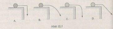 Giải bài tập SBT Vật lý 10 bài 15