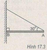Giải bài tập SBT Vật lý 10 bài 17