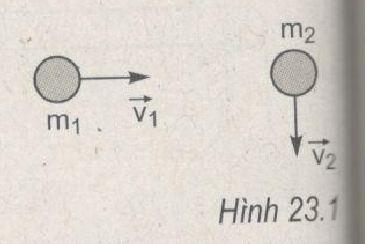 Giải bài tập Vật lý 10 SBT bài 23