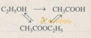 Giải Sách bài tập Hóa học 9 bài 48: Luyện tập: Rượu etylic, axit axetic và chất béo