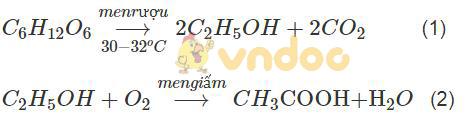 Giải Sách bài tập Hóa học 9 bài 50: Glucozơ