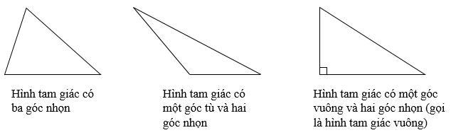 Hình tam giác. Diện tích hình tam giác