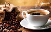 Chọn máy pha cà phê thương hiệu nào giữa Delonghi, Saeco và Melitta?