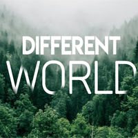 Lời bài hát Different World Alan Walker
