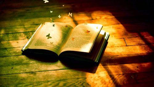 Kể về tâm sự của một cuốn sách bị bỏ quên