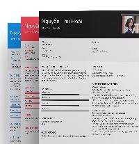 Mẫu CV online