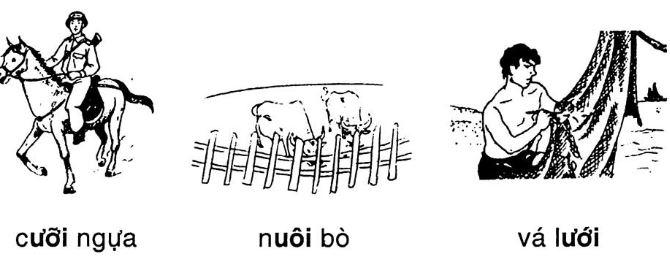 Giải vở bài tập Tiếng Việt 1 bài 35: uôi ươi
