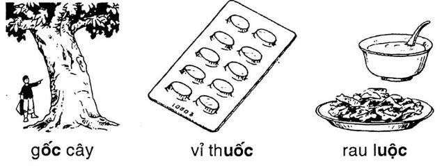 Giải vở bài tập Tiếng Việt 1 bài 79: ôc UÔC