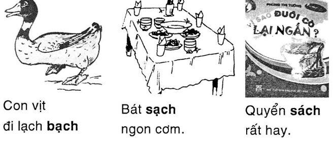 Giải vở bài tập Tiếng Việt 1 bài 81: ach