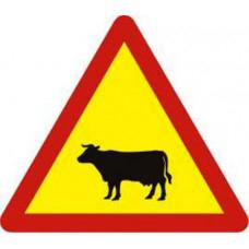 Biển báo gia súc W230