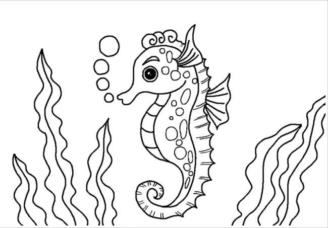 Tranh Tô Màu Loài Vật Dưới Biển Tranh Tập Tô Các Loài động