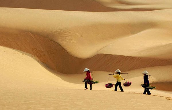 Bài ca đi trên cát
