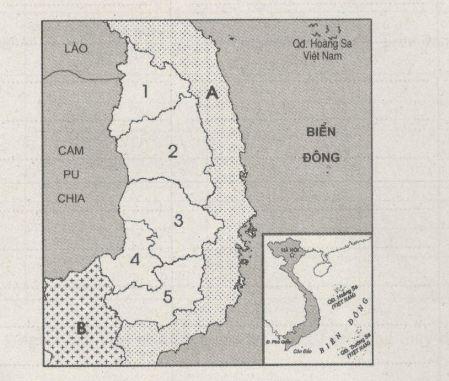 Giải bài tập SBT Địa lý 12 bài 37: Vấn đề khai thác thế mạnh ở Tây Nguyên