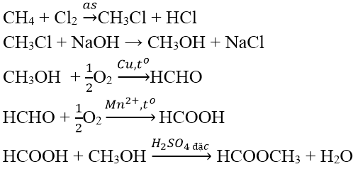 Các phản ứng hóa học của Este