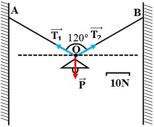 Giải bài tập VBT Vật lý lớp 8 bài 4: Biểu diễn lực