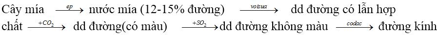 Câu hỏi lý thuyết về tính chất của Cacbohidrat