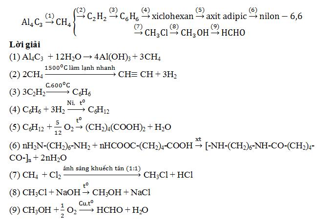 Chuỗi phản ứng Amin, Amino Axit