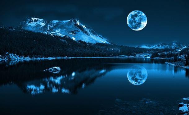 mảnh trăng cuối rừng