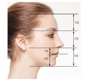 Soạn Mĩ thuật lớp 8 Bài 13: Giới thiệu tỉ lệ khuôn mặt người