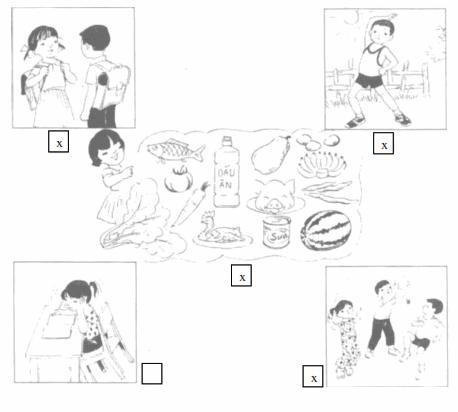 Giải Vở bài tập Tự nhiên và xã hội 2 bài 4