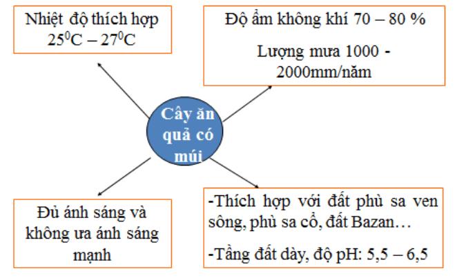 lý thuyết môn công nghệ 9