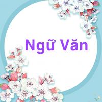 Bình giảng bức tranh tứ bình trong bài thơ Việt Bắc của Tố Hữu