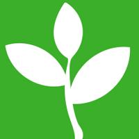 Thực hành: Trồng cây ăn quả