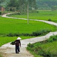 Thuyết minh về làng tranh Đông Hồ