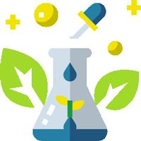 Trắc nghiệm Sinh học 6 bài 47: Thực vật bảo vệ đất và nguồn nước