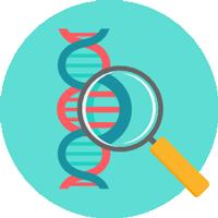 Trắc nghiệm Sinh học 6 bài48: Vai trò của thực vật đối với động vật và đối với đời sống con người