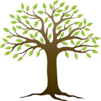 Giải Vở bài tập Tự nhiên và xã hội 2 bài 15: Trường học